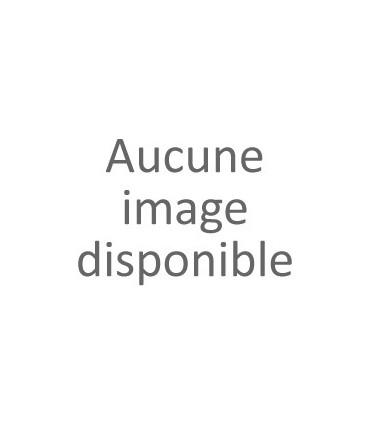Support de plaque latéral Ducati Scrambler 800